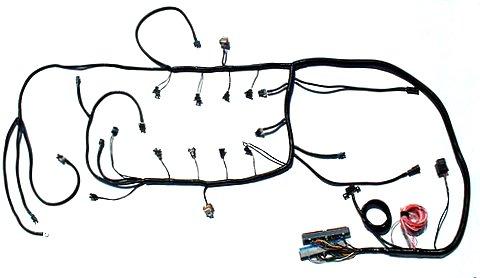 ls1 corvette engine wiring harness  wiring diagram